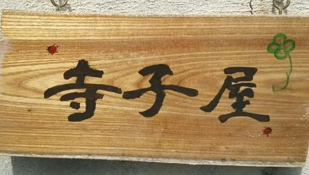 学習支援に特化した放課後等デイ 石垣島 寺子屋
